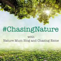 chasingnature