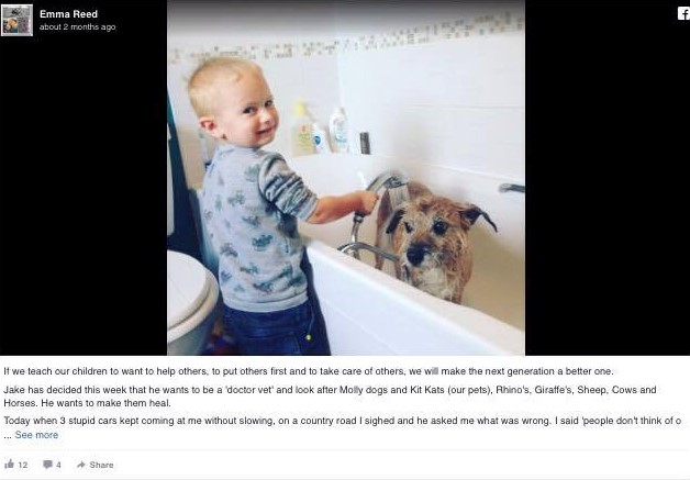 child bathing dog