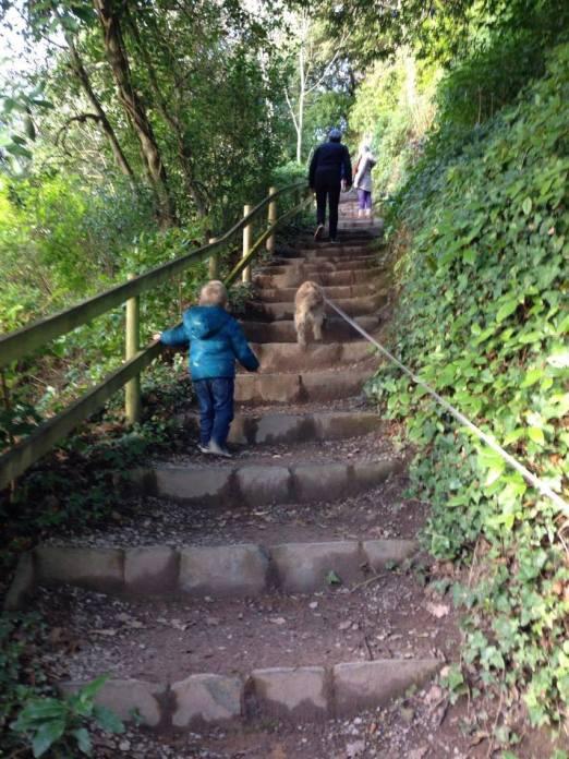 family walking up steps